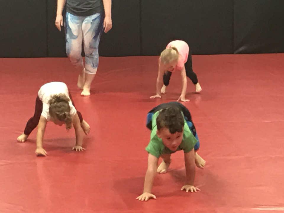 Photo of half-pints Brazilian Jiu-Jitsu class at Indiana Brazilian Jiu-Jitsu Academy