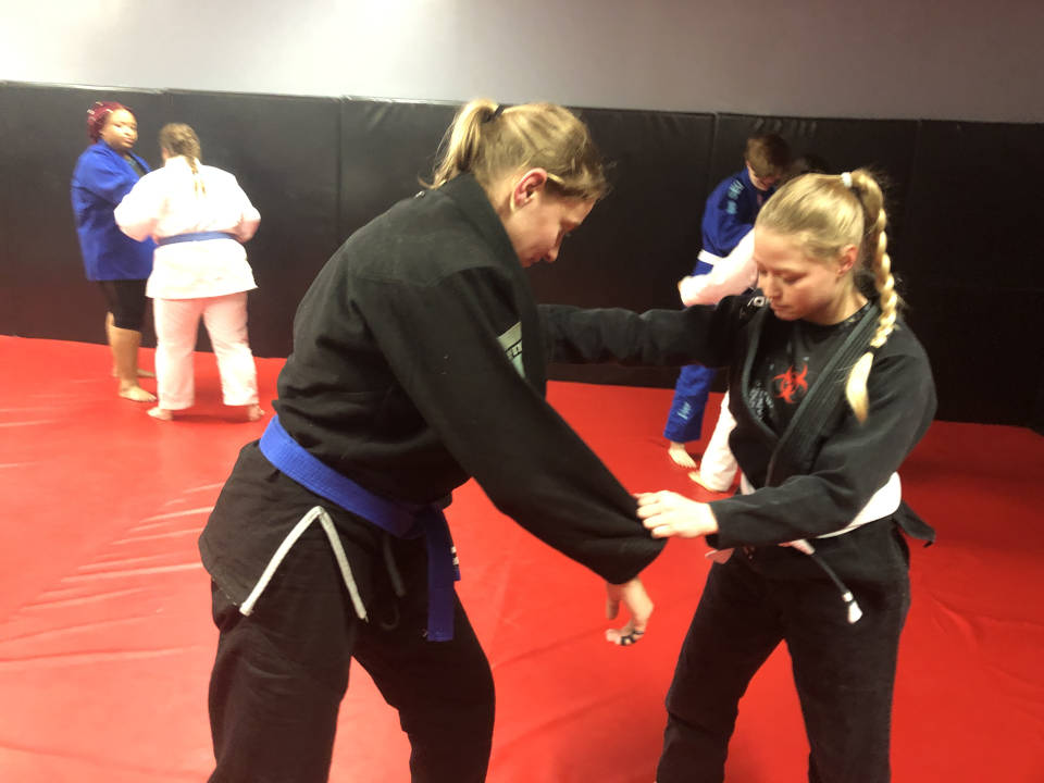 Photo of Women's-Only Brazilian Jiu-Jitsu class at IBJJA